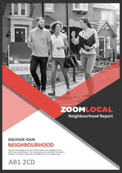 Zoom Local
